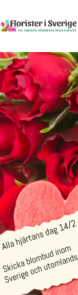 Florister i Sverige - beställ blombud online