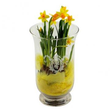 Påskplantering med påskliljor i hög glasvas. Finns att beställa hos Florister i Sverige.