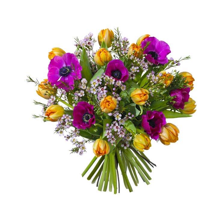 Bukett med anemoner, tulpaner och vaxblommor. Orange, lila och grönt. Urtjusig! Beställ blommorna hos Interflora.